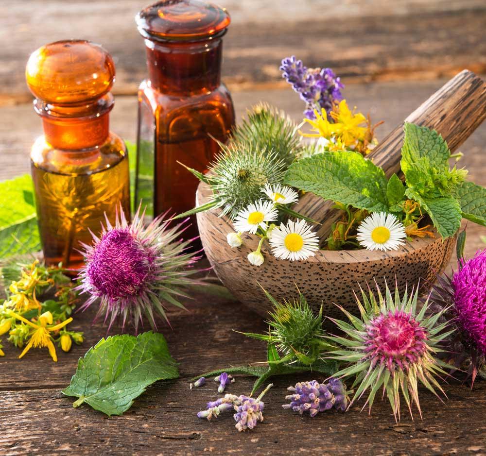 gesundheitspraxis, schmerztherapie, burnout prävention, stressprävention, angsttherapie, chronische schmerzen, chur schweiz, kordulla zoller